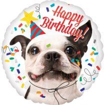 43 cm-es Francis bulldog Happy Birthday fólia lufi